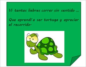 tortuga lenta