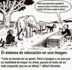 foto el sistema educativo evalua atodos igual